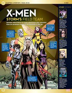 X-Men Storms Field Team