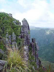 Pinnacles - Coromandel