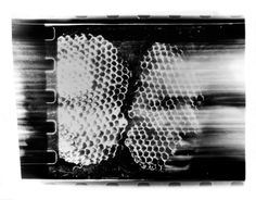 From Lego cameras to incorporating bodily fluids, we explore experimental photography. Lego Camera, Brassai, Experimental Photography, Monochrome Photography, Photo Projects, Artsy, Prints, Pictures, Image