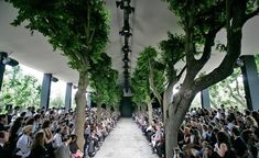 Dior Runway - Forest of Fashion