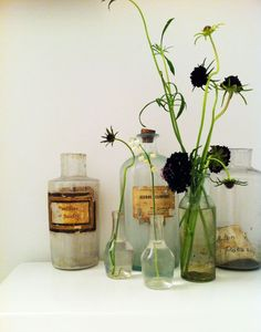 apothecary vases: