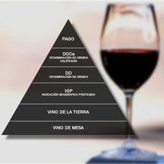 Clasificación del #vino en #España #enoinfografia