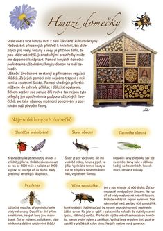 Hmyzí domečky 1 Bug Hotel, Jewel Tones, Spring Crafts, Garden Design, Diy And Crafts, Home And Garden, Gardens, Speech Language Therapy, Insect Hotel