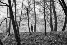 by Marcel Kolacek