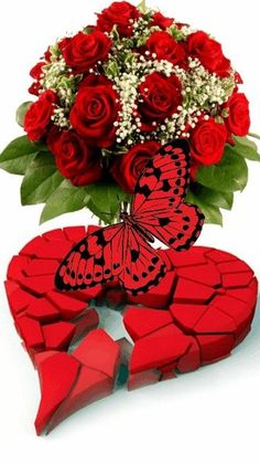Romantic Love Photos, Beautiful Love Pictures, Beautiful Gif, Beautiful Roses, Beautiful Flowers Wallpapers, Wonderful Flowers, Beautiful Flowers Garden, Rose Flower Wallpaper, Love Wallpaper