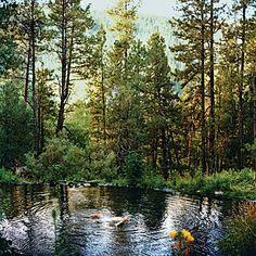 New Mexico Mountains Warm Springs