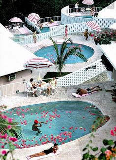 Engagement Party-flamingo pink flower petals in pool