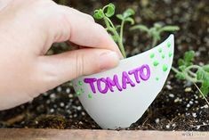 Give broken pots a new lease on life by turning them into plant markers. - Gardening hack