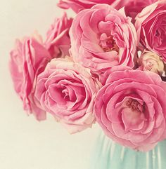 History, Varieties and Meaning of Pink Rose #roses #pinkroses #romantic #florist
