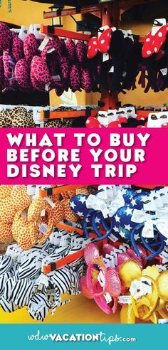Did you know you could save boatloads by purchasing items before you head on your DIsney World vacation?
