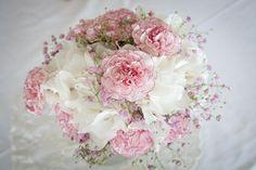 neilikka hortensia pioni leinikki tähtiputki - Google Search