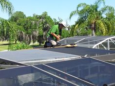 Ludlows Lawn Service offers a wide variety of services for Celebration Florida residents including landscaping, pool care, irrigation and screen repair. Celebration Florida, Pool Care, Lawn Service, Ping Pong Table, Irrigation, Landscaping, Yard Landscaping, Landscape Architecture, Garden Design