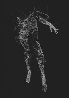 http://www.thisiscolossal.com/2015/08/generative-illustrations-of-the-human-form-by-janusz-jurek/