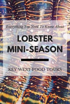 Get your gear, permits, and friends together. Lobster Mini Season 2017 is COMING! Key West Florida, Florida Keys, Lobster Season, Key West Resorts, Usa Travel, Boating, Travel Destinations, Tours, Seasons