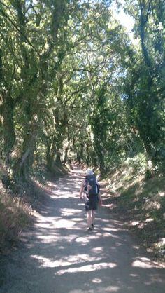 Buen Camino!!!