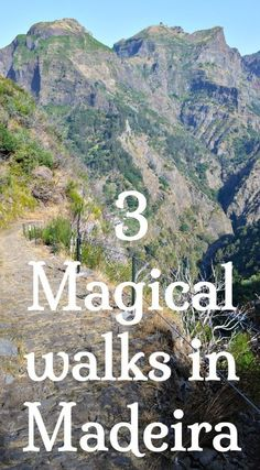 3 Easy to Moderate walks in Madeira