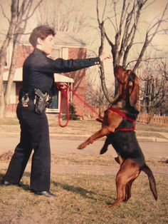 A bloodhound we had was used 4 times to look for people.
