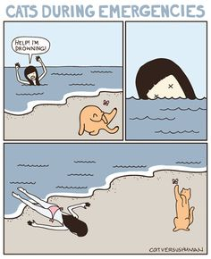 Cats are cute and lovable creatures, but they can sometimes be a true mystery to us humans. These creative comics, called Cat Versus Human, perfectly describe the difficulties a cat owner faces when dealing with