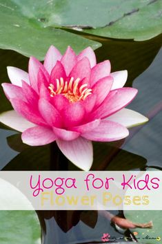 Yoga for Kids: Flower Poses. How to safely do yoga with kids, including lotus pose, flower pose, and lotus mudra.