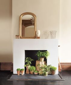 Use greenery to dress up an unused fireplace.