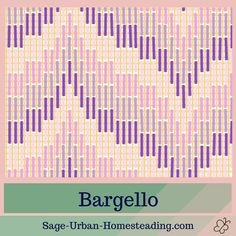 Classic bargello needlepoint stitches and lots of diagrams at sage-urban-homest. Broderie Bargello, Bargello Needlepoint, Bargello Quilts, Needlepoint Stitches, Funny Needlepoint, Needlepoint Pillows, Needlepoint Kits, Needlepoint Canvases, Needlework