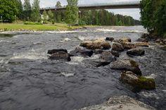 Uudistunut Karvion koskialue, Heinävesi, Etelä-Savo