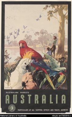 Australian Parrots by James Northfield - Australian Vintage Posters - Travel Posters Art And Illustration, Illustrations, Art Deco Posters, Poster Prints, Retro Posters, Surf Vintage, Outback Australia, Posters Australia, Australia Pics