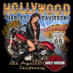Harley Davidson Shirts, Harley Davidson Kunst, Harley Davidson Kleidung, Harley Davidson Tattoos, Harley Davidson Pictures, Harley Shirts, Harley Davidson Wallpaper, Harley Davidson Motorcycles, Steve Harley