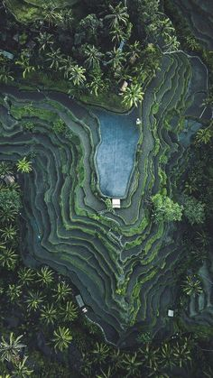 Coming Soon Bali has one of the most incredible landscapes around the world. Check out these Bali rice fields from above. Add this to your Bali bucket list before you travel there. Aerial Photography, Nature Photography, Travel Photography, Photography Ideas, Summer Photography, Amoled Wallpapers, Iphone Wallpapers, Magic Places, Voyage Bali