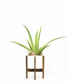 Modern Planter Stand with Pot Mid Century Modern Planter with