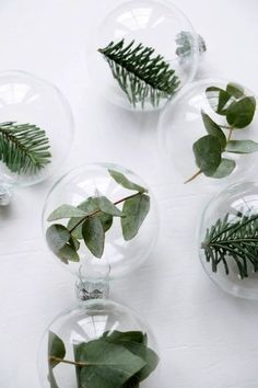 Transparent Christmas balls for a vegetal and natural Christmas. Just add leaves, branches, green! Informations About Transparent Christmas balls for a vegetal and natural Christmas. Just add leaves… Pin You … Days Until Christmas, Christmas 2017, Christmas Holidays, Christmas Crafts, Green Christmas, Homemade Christmas, Christmas Greenery, Merry Christmas, Christmas Christmas