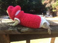 0959b2a2d98a1 38 Best Bearded Dragon Gifts images in 2017 | Bearded dragon, Dragon ...
