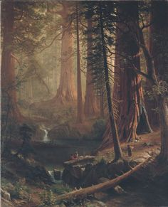 "Albert Bierstadt, ""Giant Redwood Trees of California"" (1874), oil on canvas, 54 1/2 × 65 1/2 in (Berkshire Museum, via Wikimedia Commons)"
