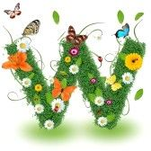 alphabet letters : Beautiful spring letter  W