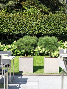 division planter supplied by koberg Outdoor Furniture Sets, Outdoor Decor, Planters, Sidewalk, Division, Design, Home Decor, Artificial Turf, Self Watering