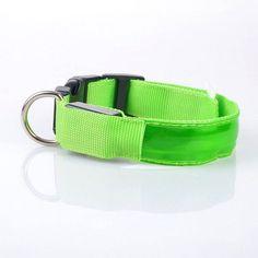 Light Glow Dog Collar