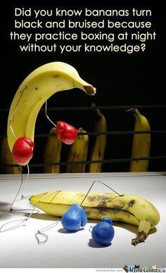 Banana Boxing