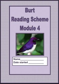 This is the cover of module 4 of a series of 6 modules covering all the basic phonic sounds and the blends. There are over 700 worksheets in the series and they are useful for beginner readers or for slow readers who need to go back to basics.  You can buy the series at www.currclick.com and pay in dollars. The series is going on special offer soon so watch out for that.