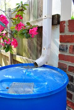 I really want a rain bucket like this at our house.  It would be great to have FREE water to use year-round.  Of course, we need rain in Oklahoma first... but still... what a great idea.  I think I would pain the bucket so it is a little prettier.