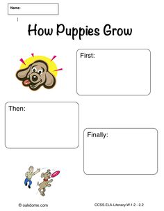 Ipad Graphic Organizer  How To Grow A Plant  Plain CommonCore