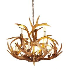 12 Lights Rustic Resin Antler Dining Room Chandelier ($413) ❤ liked on Polyvore featuring home, lighting, ceiling lights, antler lamp, antler candelabra, resin antler chandelier, rustic lighting and rustic hanging lights