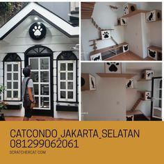 catcondojakarta: cat condo,catplay ground