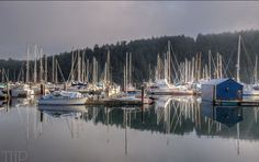 Reflections. Maple Bay Marina, #VancouverIsland, BC shared by @ToadHollowPhoto on our #SocialTravel website feed.