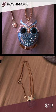 Blue Owl Necklace Betsey Johnson owl necklace Betsey Johnson Jewelry Necklaces