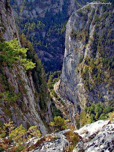 Bicaz Canyon