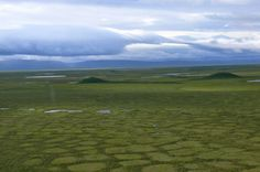 Tundra polygons, or patterend ground, are characteristic of periglacial environments.
