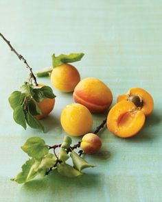 """See the """"Apricot Basics"""" in our Apricot Recipes gallery"""