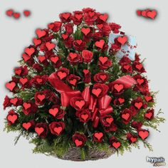 Copilului meu cu drag !!! – Lacrimaroua Beautiful Flowers Wallpapers, Beautiful Nature Wallpaper, Beautiful Roses, All Flowers, My Flower, Valentines Gif, Illusion Photos, Happy Birthday Cake Images, Valentine Activities