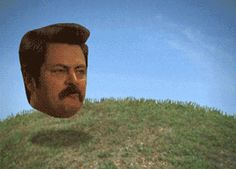 I Present You The Best Gif On The Internet