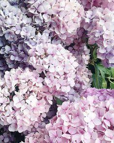 Fashiony Graphic Tees www.shopfashiony.com